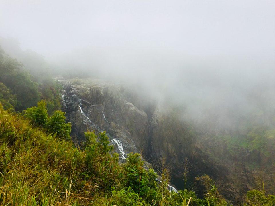 クイーンズランドの湿潤熱帯地域 オーストラリア  Australia