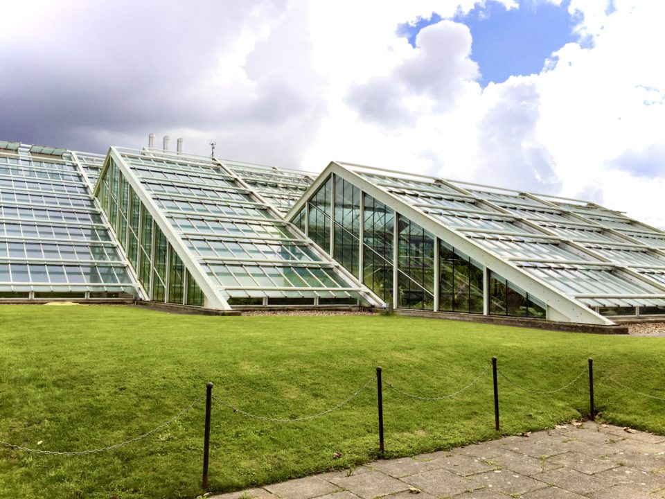 キューガーデンズ Princess of Wales Conservatory