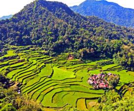 フィリピンの世界遺産 コルディリェーラの棚田群